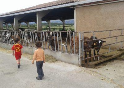 SOFA en Santa Cilia de Panzana 8