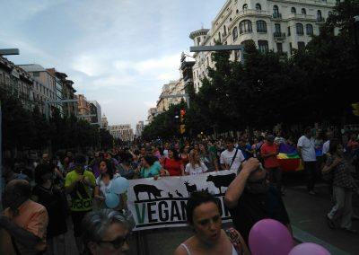 SOFA en el Orgullo 2016 Zaragoza 6